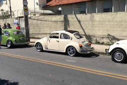 47º The Bugs